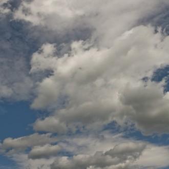 dog mountain sky