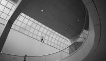 MFA, Boston Ceiling